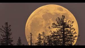 Biggest brightest moon to light up night sky on Sunday