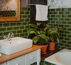 botanische begleiter fürs bad auf dem stillen örtchen