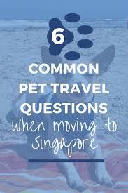 Dresser Rand Singapore Jobs by 20 Best Sembawang Animal Quarantine Station Images On Pinterest