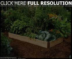 Greenland Gardener Raised Bed Garden Kit by Raised Bed Garden Kits Lowes Home Outdoor Decoration