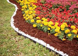 Make Your Garden Better with Mulch