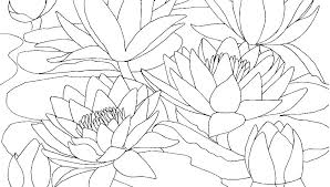 Flower Printable Coloring Pages Free Sheets Simple Flowers