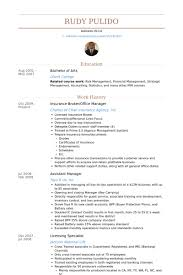 Insurance Broker Office Manager Resume Example