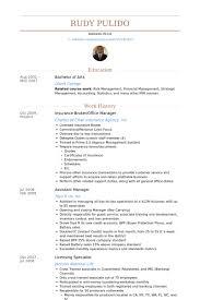Insurance Broker Resume Samples Visualcv Database