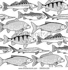 Peixes Pictures Of Photo Albums Freshwater Fish Coloring Pages