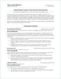 Sample Travel Agent Resume Agency Manager