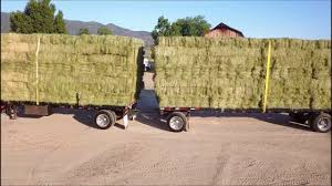 Mavic Pro Loading Hay Trucks - YouTube Rapid Relief Team Hay From Tasmania To Local Farmers Goulburn Post Trucks Wagon Lorry Rig Tractors Hay Straw Photos Youtube Hay Trucks For Hire Willow Creek Ranch Hauling Bales Hi Res Video 85601 Elk161 4563 Morocco Tinerhir Trucks Loaded With Bales Of Stock Wa Convoy Delivers Muchneed Droughtstricken Nsw Convoy Heavily Transporting Over Shipping And Exporting Staheli West Long Haul As Demand Outstrips Supply The Northern Daily Leader Specialized Trailer On Wheels For Transportation Of Custom And Equipment Favorite Texas Trucking