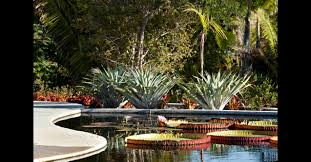 Raymond Jungles Inc  Brazilian Garden at Naples Botanical Garden