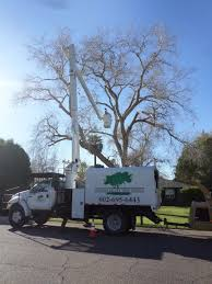 Dead Tree Removal Using A Boom Extension Truck By Phoenix Valley ... Photos Shechtman Tree Care C Lazy T Movers Bucket Truck Services Tamarack West Linn Pagodins Removal Service Providing The Best Dead Using A Boom Extension Truck By Phoenix Valley Equipment For Sale A Better Arborist Treetrimming Catches Fire In Mims Undcover Veggie Commercial Success Blog Asplundh Expert Co Taps Our Arbormax Intertional Trucks Bartlett Experts Youtube Gmc Asplundh Tree Truck V 10 Fs 17 Farming Simulator Mod