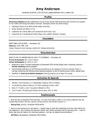 Profile For Resume Example Graphic Design Advertising Brief Sample Proposal Timeline Template Samples
