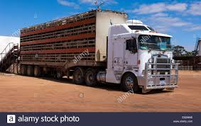 Katanning Stock Photos & Katanning Stock Images - Alamy This Morning I Showered At A Truck Stop Girl Meets Road Travels Christopher E Brnen Restaurants In South St Paul Mn Best Near Me Saint On The Silver Screen Insiders Blog Nz Trucking Stockmans Mate The Gibb River Overlanding Family Stockmens In Heavy Tablethe Australian Outback Roadhouse Stock Photos History Is Being Made Farmers Ranchers Aess Impact Of North Wibaux Montana Montanas Historic Landscapes Look Walking Tour Dtown Elko Store By Local