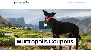 Muttropolis Coupons - Save 25% On Dog Beds And More + Free Shipping Printerpix Deals Black House White Market Coupons Free Giftsforyounow Coupons Buy Gifts For Every Occassion 20 Coupon Code 8 Gift Ideas To Help Beach Lovers Enjoy Fun In The Sun Giftsforyounow Com Best Buy Seasonal Get 50 Off W Erin Condren Promo Codes Fyvor Uhaul Pod Coupon Code Perfume Online Fathers Day Sales And Personal Creations Graduation Banner Born2beua Discount Codes Gifts You Now Taylormade Certified Pre Walmart Ship Store Force 4 Chandlery