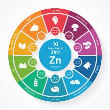 Pumpkin Seeds Zinc Testosterone by Zinc Benefits Intakes Deficiencies Natural Sources Recipes
