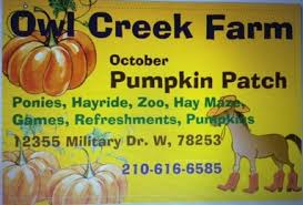 Nearby Pumpkin Patches by Pony Parties And Petting Zoos