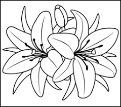 Free Coloring Pages Of African Flowers