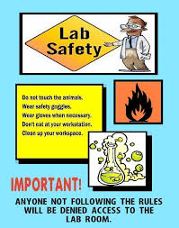 Make A Science Fair Project About Lab Safety