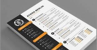 50 Unique Resume Template Envato