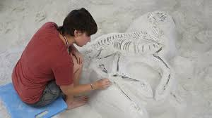 Ashfall Fossil Beds State Historical Park by Ashfall Opens For 26th Season Nebraska Today University Of
