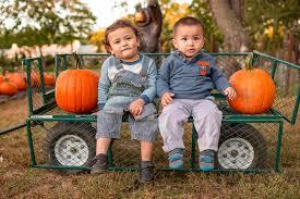 Pumpkin Picking Nj 2015 by Ward U0027s Pumpkin Patch A Family Farmstand In Ridgewood New Jersey