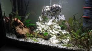 aquarium nano eau de mer quel matériel pour lancer un aquarium d eau de mer