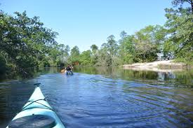 The Shed Bbq Gulfport Mississippi by Southeastern Louisiana Paddling Old Fort Bayou Paddle North