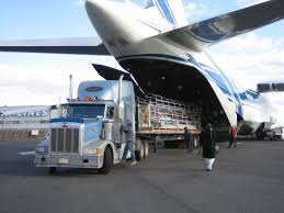 100 Expediter Trucks For Sale World Cargo Logistics Operates As A Global Provider Of