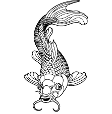 Healthy Male Koi Fish Coloring Pages