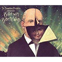 Smashing Pumpkins Muzzle Cover by Smashing Pumpkins Disillusionment Obsession Confusion