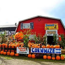 Bobs Pumpkin Patch Snohomish by Grab The Calendar Here Are Some Of The Best Northwest Fall