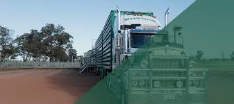 100 Livestock Trucking Companies Shanahans Transport
