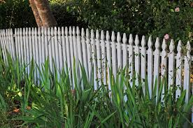 100 Building A Paling Fence Permits