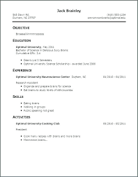 Sample Professional Cv Examples Resume Template Good Of Resumes First Job For Bad Example