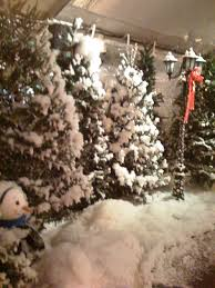 Christmas Tree Shop No Dartmouth Ma by Special Effects Snow Faux Snow Movie Snow Effects Services