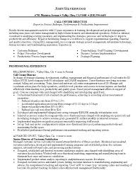 Sample Telemarketing Director Resume Examples For