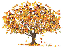 Autumn Tree Clip Art 47