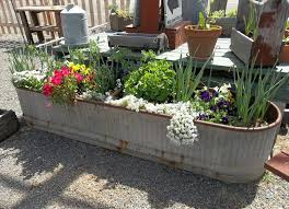 Horse Trough Bathroom Sink by Exterior Design Appealing Garden Design With Oval Galvanized