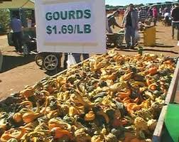 Pumpkin Picking Nj Colts Neck by Delicious Orchards Colts Neck All You Need To Know Before You