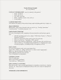 Volunteer Work Examples For Resume Unique Sample Experience Example