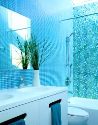 Teal Brown Bathroom Decor by Accessories Likable Blue Bathroom Ideas Terrys Fabricss Blog