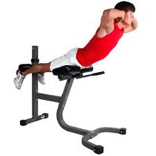 Roman Chair Sit Ups by Roman Chair Exercises Abs