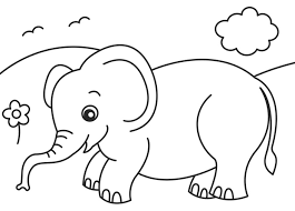Baby Jungle Animal Coloring Pages