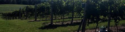Basses Pumpkin Farm Muskego Wi by Burr Oak Winery Discover Wisconsin