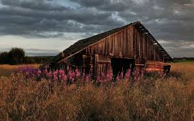 Photo Collection Beautiful Barn Wallpaper Old Barn Scene In Western Russia Rustic Farm Building Free Images Wood Tractor Farm Vintage Antique Wagon Retro With Silver Frame Urbamericana G Poljainec Acrylic Pating Winter Of Yard Photo Collection Download The Stock Photos Country Old Barn Wallpaper Surreal Scene Dance Charlotte Joan Stnberg Art Scene Unreal Engine Forums