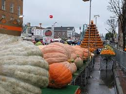 Pumpkin Festival Cleveland Ohio by 241 Best Ohio Images On Pinterest Collage Football Autumn Leaf