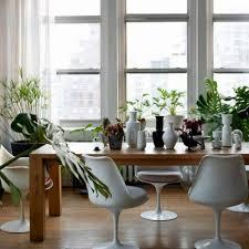 Good Plants For Bathroom by 100 Plants Bathroom Bathroom Flowers And Plants Bathroom