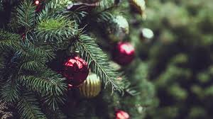 Christmas Tree Farm Lincoln Nebraska by 5 Tips For Picking The Perfect Christmas Tree Home And Garden