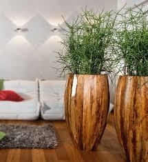 pflanzkübel für den innen und außenbereich archzine net