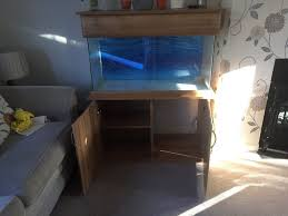 seashell elite aquarium cabinet with led lights in