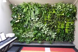 Vertical Vegetable Garden Indoor Planting Wall Living Systems Planters Green
