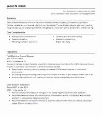 Resume Examples For Healthcare Field Marketing Channel Manager Objective